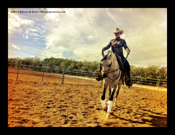 arabian horse_photogirltravels_17
