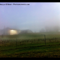 Biltmore Estate, Asheville, NC/Historical Inn Shrouded in Fog