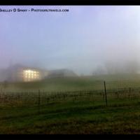 Biltmore Estate, Asheville, NC/Historical Inn Shrouded in Fog