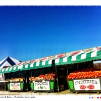 Nor-Cal Day Trip - Seafood & Farmers Market Adventure