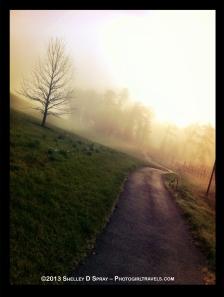 photogirltravels.com_biltmore morning walk
