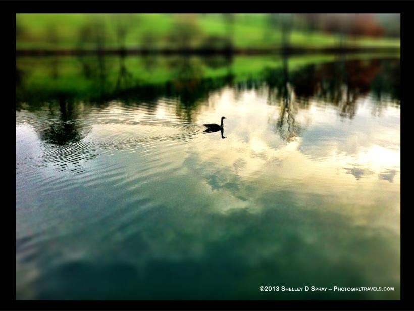 photogirltravels_biltmore walk_Lake 1