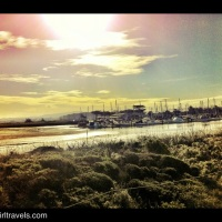 Road Trip to Carmel - First Stop Moss Landing