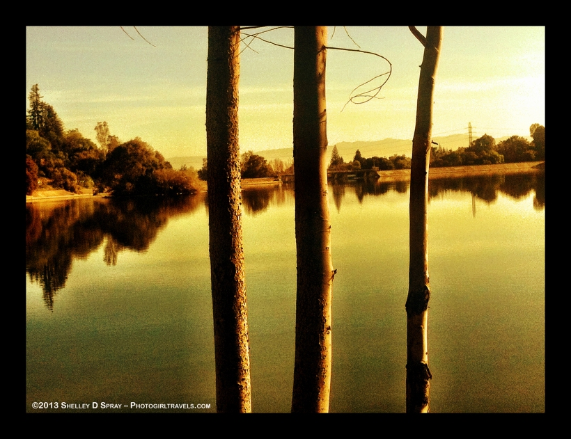 Vasona Lake View at Sunset