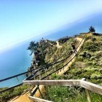 Road Trip to Mendocino: Highway 1