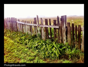 Photo Girl Travels_Mendocino Landscape 2