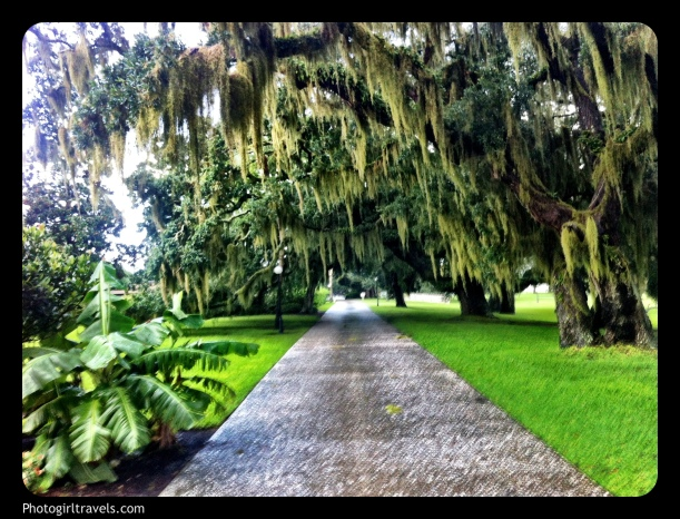 Grounds at Jekyll Island Club